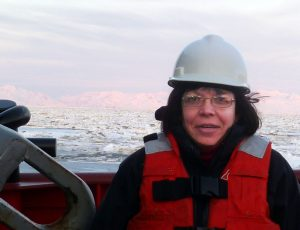 cook inlet ice 2012 (2)